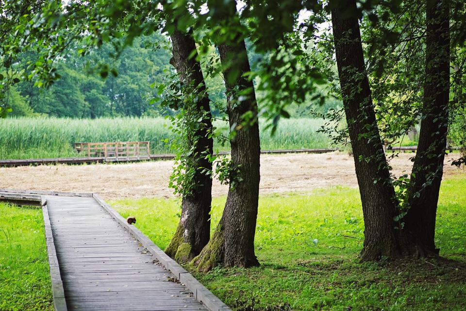 sesja slubna plener boho w parku w Lublinie 30